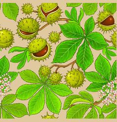 chestnut pattern on color background vector image