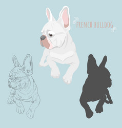 Dog silhouette and hand drawn sketch of purebred vector