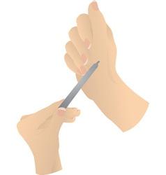 hands vector image
