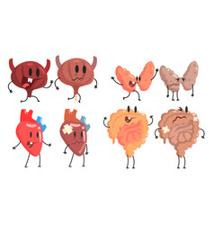 healthy and unhealthy human internal organs vector image