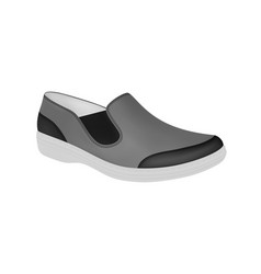 Mens shoes in vector