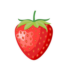 ripe berry a wild strawberry vector image