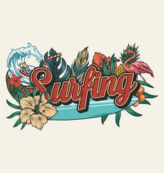surfing vintage colorful design vector image
