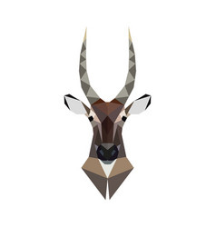 antelope portrait polygonal style wild animal vector image vector image