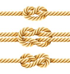 rope knots vector image