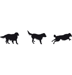 running dogs vector image