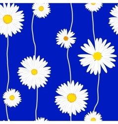 Seamless daisies pattern vector image vector image