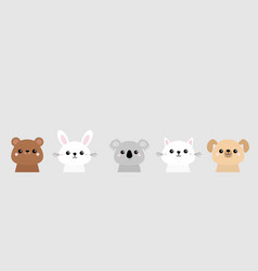 bear dog cat kitten rabbit hare grizzly koala vector image