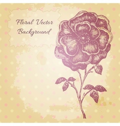 vintage background with a beautiful hand drawn vector image vector image