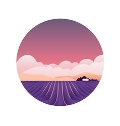 Lavender fields Provence France Spring vector image
