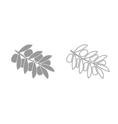 olive branch grey set icon vector image vector image