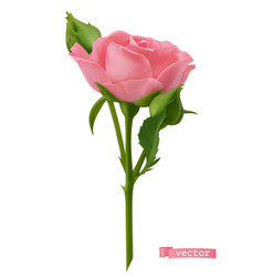 Pink rose 3d realistic object vector