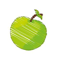 drawing green apple food image vector image