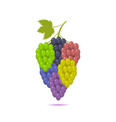 Bunche grape set vector