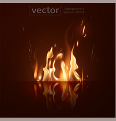 Burning fire and its glowing reflection on the vector