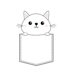 Cute baby kitten in pocket pink cheeks vector