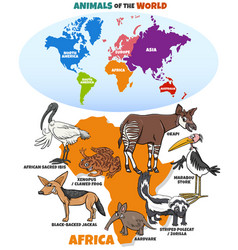 Educational with african animals and continents vector