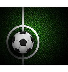 Field Soccer vector