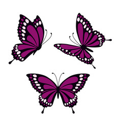 set with butterflies vector image