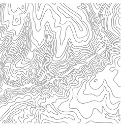 Topographic map black line on white vector