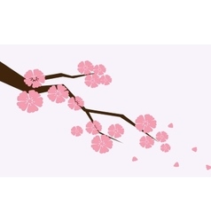 Branch of sakura with flowers Cherry blossom vector image vector image