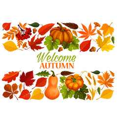 Autumn banner with border of fall leaf pumpkin vector