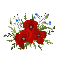 Bouquet poppies and forget-me-nots isolated vector