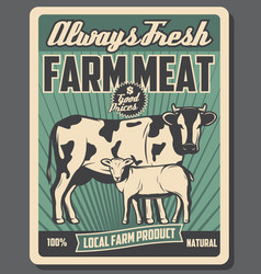 Cattle farm meat market products vector