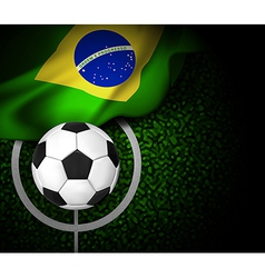 Flag Brasil Field vector image