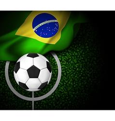 Flag Brasil Field vector image vector image