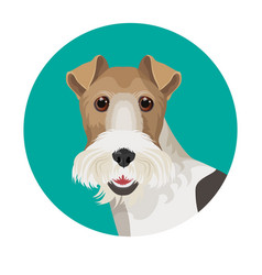 Fox terrier in color circle colorful vector