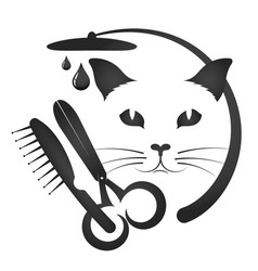 Grooming cats and other animals vector