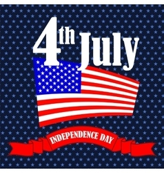 Independence Day of America vector image