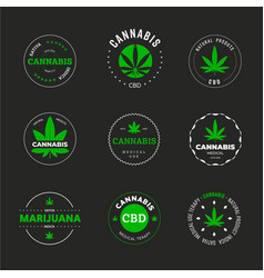label design with marijuana leaf template of vector image