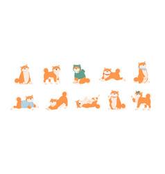 Set cute akita inu dogs in various postures vector