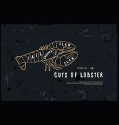 Stock lobster cuts diagram vector