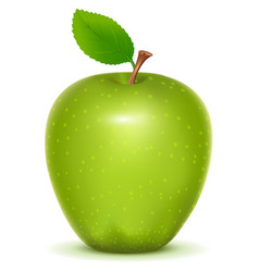 green apple granny smith on white background vector image vector image