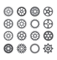 A set of gears and pinions on a white background vector image