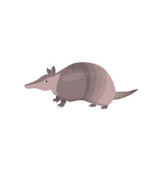 Banded armadillo transparent isolated on white vector
