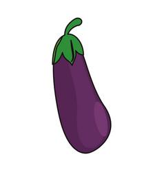Eggplant vegetable food fresh vector