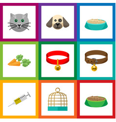 Flat icon animal set of vaccine kitty collar vector