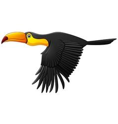 Cute toucan bird cartoon flying vector image vector image