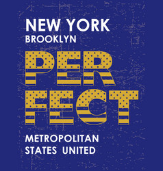 Vintage new york city perfect typography vector