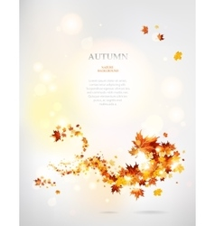Beautiful swirl of autumnal leaves vector image