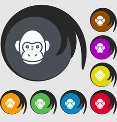Monkey icon sign Symbols on eight colored buttons vector image