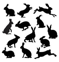 Big set rabbit isolated white background vector