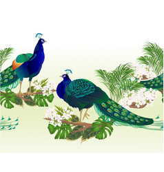 border seamless background beauty exotic birds vector image