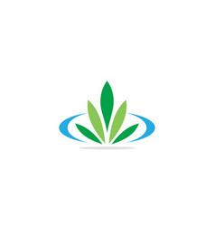 green leaf floral organic logo vector image