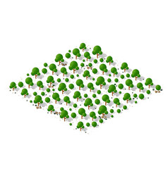 nature forest landscape isometric vector image