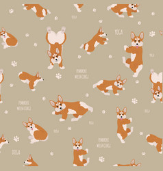 yoga dogs poses and exercises welsh corgi vector image